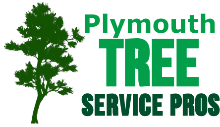 Plymouth tree service pros